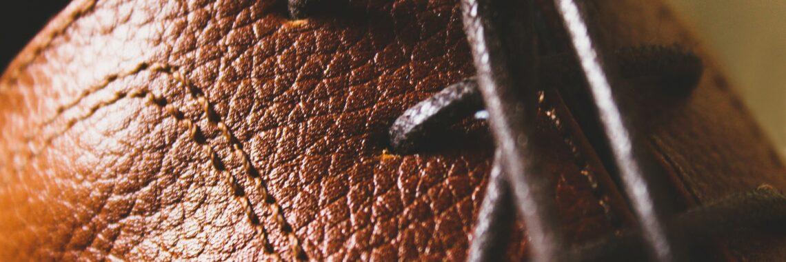 Usnjena obutev
